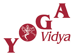 Yoga Vidya Logo